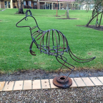 Kangaroo: $280