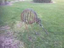 Kiwi: $190